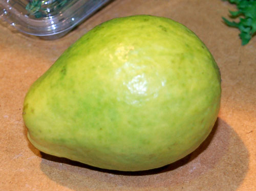The guava is a very delicious fruit grown typically in a tropical climate.     The origin is unknown, but cultivation has spread rapidly throughout the Caribbean, Central America, Mexico, and the East Indies.