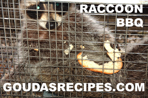 biggest, comedy, recipe in the world-Racoon BBQ. Belle Ganzon