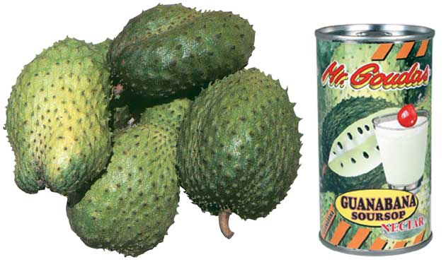 One of my appointments was with the manufacturers of nectars and soft drinks in Costa Rica, with whom I will now be collaborating again in the production of the Guanabana and the Passion Fruit products.